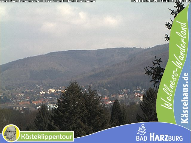 Bad Harzburg Skyline Panorama